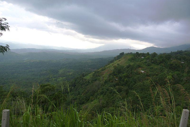 Badulla_hills_tropical_rain_forest