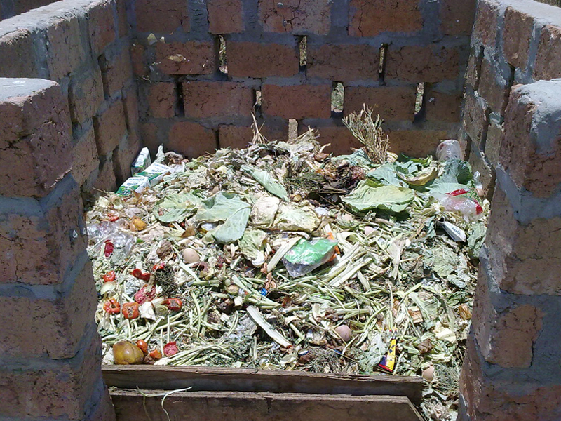 Manage Domestic Waste
